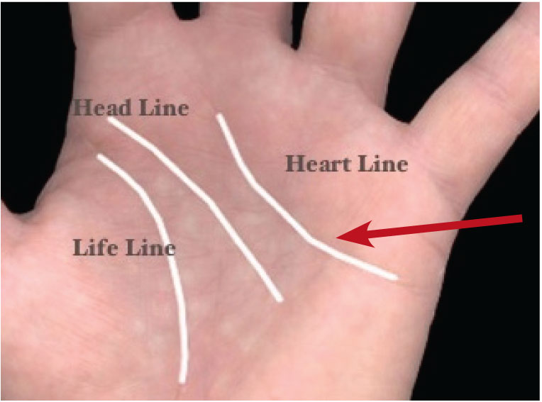 Where Is The Lifeline On Your Hand