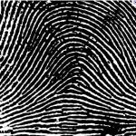 ArchFingerprint